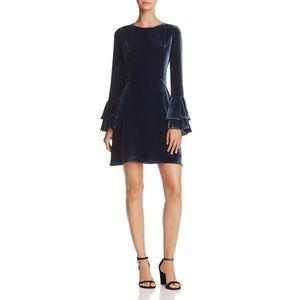 Parker Blue Velvet Bell Sleeve Dress